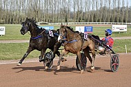 Courses de Vire-Normandie (24/02/2021)